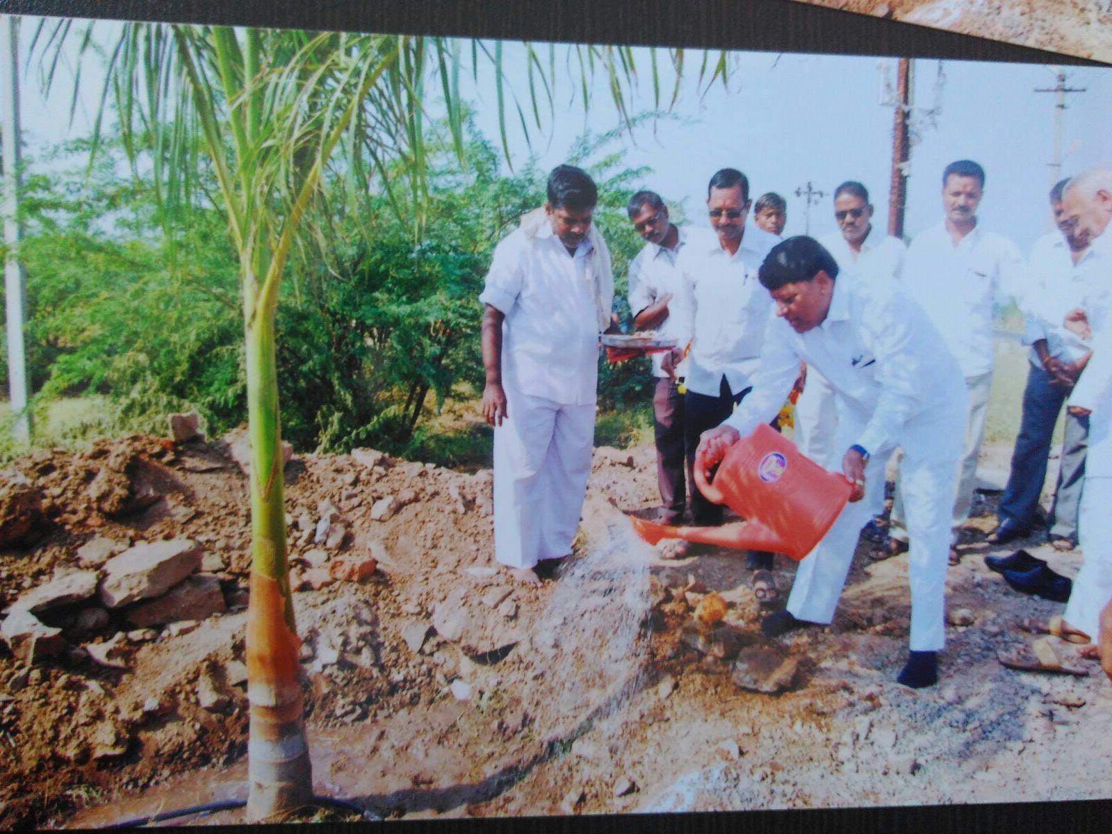 Plantation in Nimbut, Ta.  Baramati